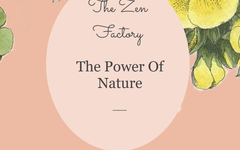 'Zen' met the Zen Factory